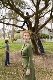 L'arbre de vie de Terrence Malick